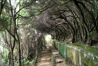 Madeira_01