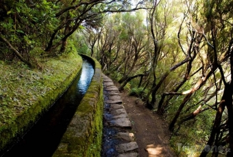 Madeira_07